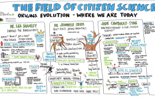 Experts Drs. Shanley and Shirk and Cawthray Sims on the Field of Citizen Science. Graphic Recording by Clarity Ink.